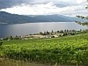 Wine from the Okanagan Valley